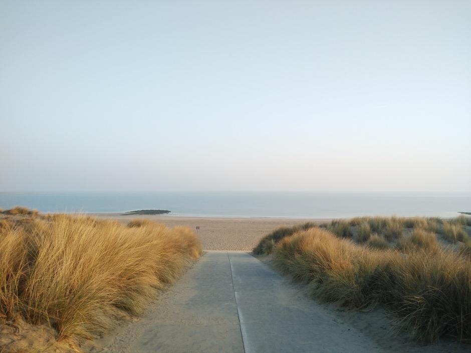 Less Waste müllfreier Strand Umwelt