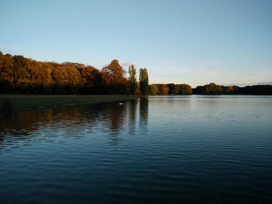 Spiegelung auf dem Wasser am Weiher